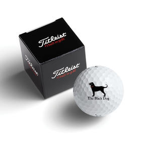 titleist standard 1 ball box with dt trusoft