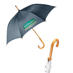 The Fashion - Auto open Stick umbrella