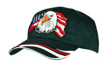 Heavy Sports Twill with Eagle USA Design