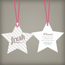 Holiday Star Ornament, 2-Sided