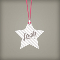 Holiday Star Ornament, 1-Sided