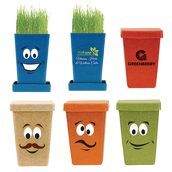Expression Planter, 1-Pack Planter