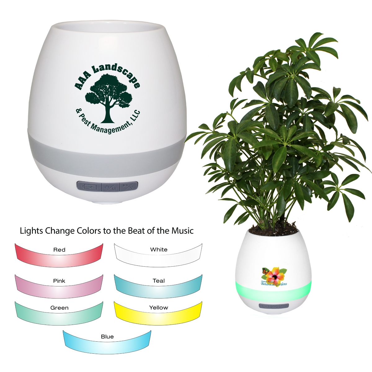 Musical Planter & Wireless Speaker