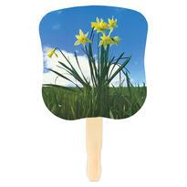 Stock Design Hand Fan-Daffodils