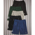 champion s162 mesh shorts with pockets