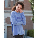 comfort colors 4900 garment dyed hooded long sleeve tee