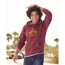 independent trading co. prm33sbp unisex special blend raglan hooded pullover sweatshirt